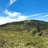 チングルマとワタスゲが咲き乱れる西吾妻山に日帰り登山!山形県側の天元台高原から登ってきました