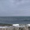 今日の鳥取の波は0点