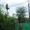 村の電柱(コンポンチュナン州)