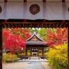 京都・洛中 - 梨木神社の紅葉