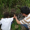 ザリガニ釣りから学ぶ3つのこと
