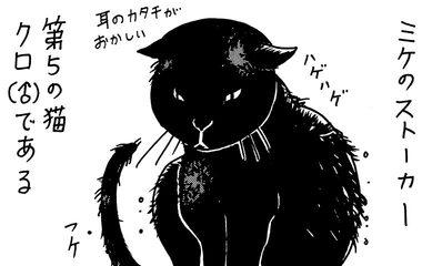 【ネコに勝てない】飼ってない猫 その13「漆黒の親衛隊」【エッセイまんが】