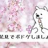 【2019年版】お花見に持っていきたいボードゲーム5選