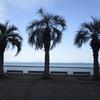 冬の海(山口県岩国市)
