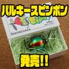 【ガウラクラフト】丸いデザインのルアー「バルキースピンポン」発売!