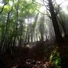 【登山】丸笹山・赤帽子山縦走~曇りには曇りの良さがある~