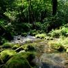高原ツーリング #木沢谷渓流