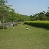 太陽が丘公園で遊ぶのだ!