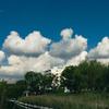 朝から夏雲が浮いている