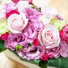 花いっぱいプロジェクト!お祝いにイイハナ・ドットコムでアレンジメントフラワーを購入してみた。