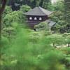 雨降る新緑と苔の銀閣寺