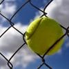 リオデジャネイロオリンピック テニス 出場選手速報&選手のリアルタイムな声をご紹介