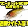 【ラッキークラフト】名作シャッドプラグのオリカラ「ベビーシャッド60SP 1091カラー」通販サイト入荷!