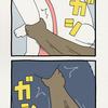 チベットスナギツネの砂岡さん「両方」