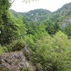岐阜県関市で片道1時間30分の登山するなら武儀の権現山!