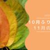 【2020】10月のふりかえり・11月の目標【今月も大忙し】