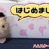 【ハムスター 動画】ペットショップでイエロージャンガリアンと目が合い買ってしまいました!#98
