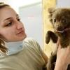 動物病院の売上。統計データから導く数字と、現実の差が語るもの ~犬猫の飼い主が見た、加計学園問題(その3)~