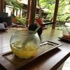 【2017子連れバリ島(7)】自然と調和した老舗ホテル「グランドハイアットバリ」、クラブツインルームのお部屋