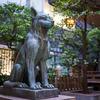 旅散歩 渋谷の宮益御嶽神社はニホンオオカミの狛犬がいる珍しい神社です。