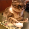 お金って何よ?
