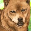 【似顔絵】犬:タロウちゃん【柴犬】