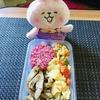今週月曜日のDIET IN A BOXから朝昼夕の3食すべてダイエット弁当です!