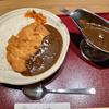 魔法の食べ物カツカレー☆