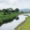 鈴川から大根川へ歩く