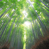 ソロキャン西日本一周の旅をする 6日目