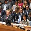 米国、安保理で孤立 エルサレム「首都」に欧州も批判