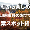 早朝なら人が少ない!天龍寺など嵐山嵯峨野のおすすめ紅葉スポット紹介