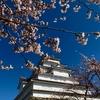 空が青い、会津の春です。
