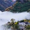 雨後の寒い朝に発生しやすい霧 大分県宇佐市西椎屋