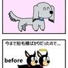 【犬漫画】祝!今日はレイの誕生日です