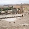 ローマ人の物語(5)/ハンニバルvsスキピオ カルタゴ滅亡へ