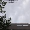 作曲工房 定点観察 2017-06-08(木)