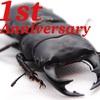 【1周年】ブログ・SNSアカウント開設1年を迎えて