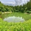蓴菜池(新潟県長岡)