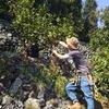 第67歩 山仕事なんてしたことない30歳が山のファンタジスタになる日