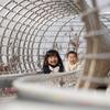 久しぶりに三木山総合公園に行ってきた!