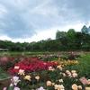 神代植物公園-屋外へ