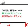 【NST賞・2019年】OPのペースに対応しつつあるスズカコーズライン|逃げ馬レース結果