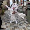 【日本三大化猫伝説】岡崎市の化猫伝説! ジバニャンや猫の恩返しのずっと以前からネコ派!
