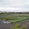 調整池の空き地(横田川運動公園)