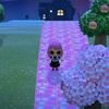 【どうぶつの森】ピンクのレンガ 道を作るのは大変な作業