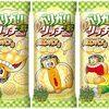 「衝撃」ガリガリ君リッチ 新味に まさかの メロンパン味!! なんとメロンパンの皮入りで発売www