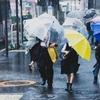 2018年は台風ラッシュ!!個人的に雨風対策でやっておいた方が良いことと、会社に出勤とか無理にしなくていいよって話