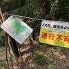 夏休みショートトリップ Vol.2。表丹沢県民の森と黒龍の滝
