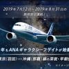 2019年予約開始中‼関西発のSFC修行でANAギャラクシーフライトに挑戦~SFC修行プランを検討~